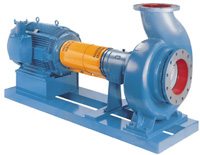 Goulds 3185 Heavy-duty Process Pumps